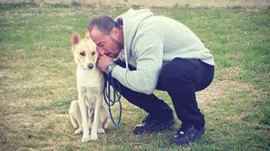 Giornata Mondiale del cane: un'occasione per festeggiare