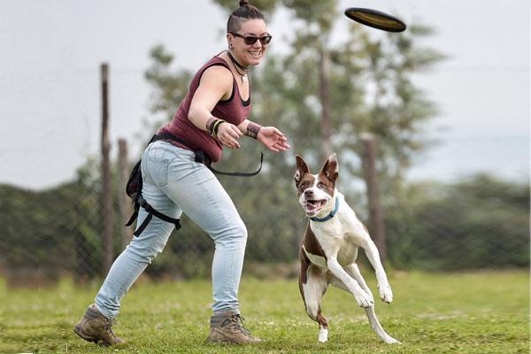 Creare un legame con un cane