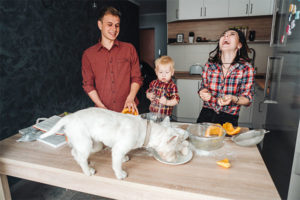 Cane in casa pro e contro