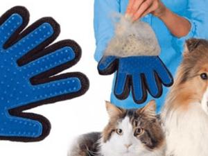 Pulire casa dai peli del cane
