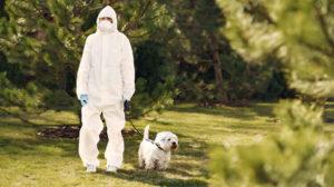 Coronavirus: sono i cani che devono aver paura dell'uomo