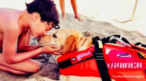 Cani da salvataggio: le razze migliori